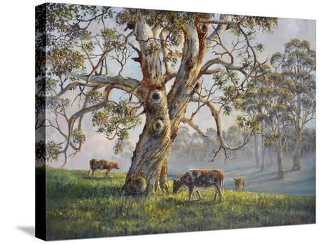 Gresford Gum 2-John Bradley-Stretched Canvas Print