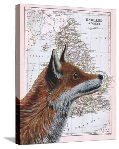 British Fox-Jane Wilson-Stretched Canvas Print