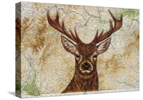 Stag-Jane Wilson-Stretched Canvas Print