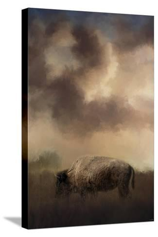 Bison Grazing at Sunrise-Jai Johnson-Stretched Canvas Print