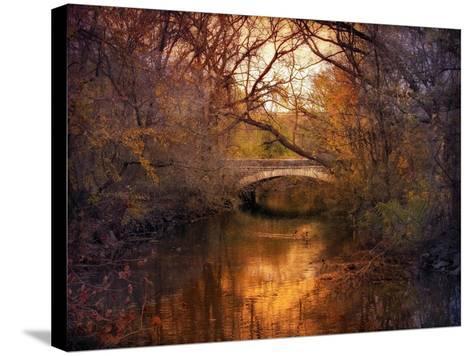Autumn Finale-Jessica Jenney-Stretched Canvas Print