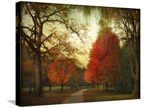 Autumn Promenade-Jessica Jenney-Stretched Canvas Print