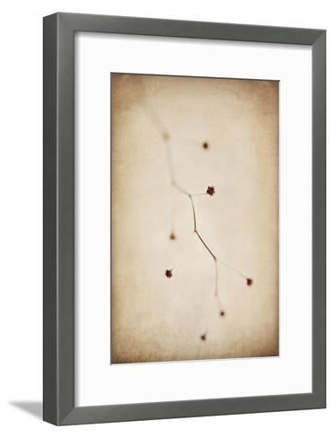 Desert Afterlife 1C-Jessica Rogers-Framed Art Print
