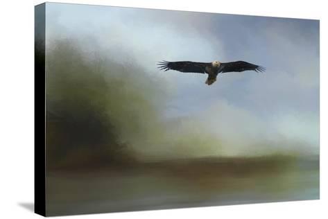 Juvenile Eagle at the Lake-Jai Johnson-Stretched Canvas Print