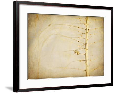 Desert Afterlife 2A-Jessica Rogers-Framed Art Print