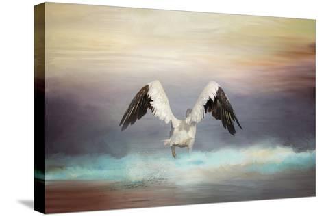 Early Morning Swim-Jai Johnson-Stretched Canvas Print