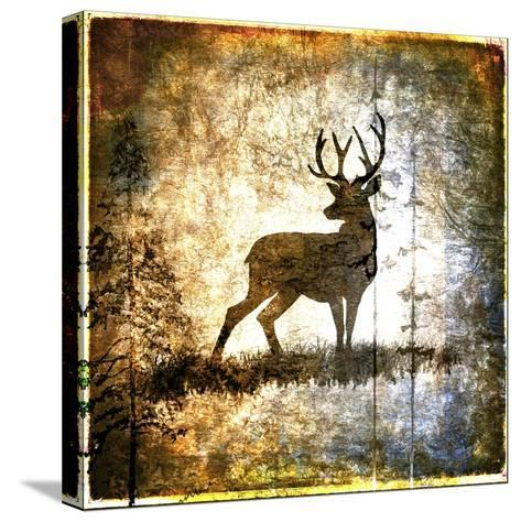 High Country Deer-LightBoxJournal-Stretched Canvas Print