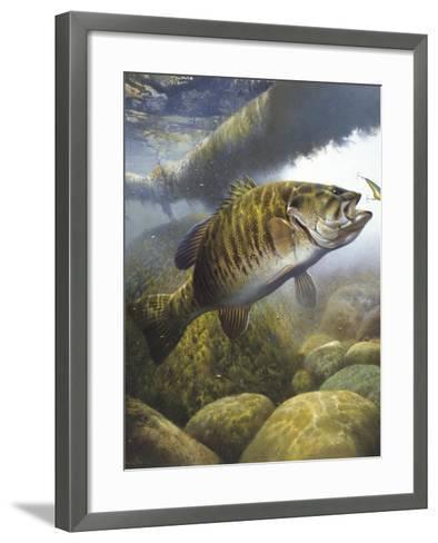 Smallmouth Bass-Larry Tople-Framed Art Print