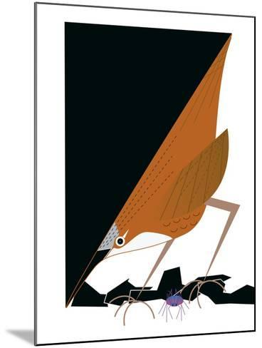 Canyon Wren-Marie Sansone-Mounted Giclee Print