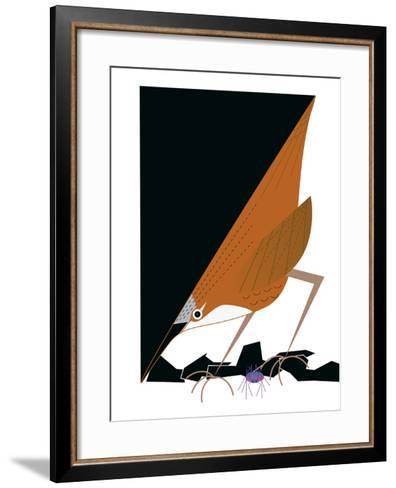 Canyon Wren-Marie Sansone-Framed Art Print