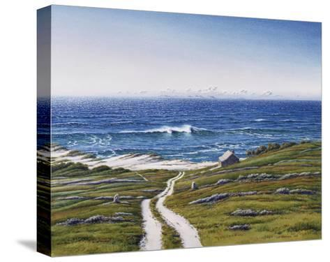 The Road to the House and the Wave-Lee Mothes-Stretched Canvas Print