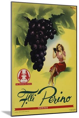 Perino - Grapes-Marcus Jules-Mounted Giclee Print
