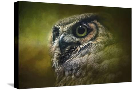Great Horned Owl in the Grove-Jai Johnson-Stretched Canvas Print