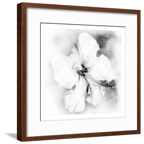 Hibiscus-Maria Trad-Framed Art Print