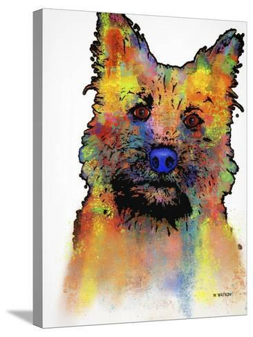Cairn Terrier 1-Marlene Watson-Stretched Canvas Print