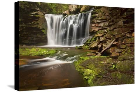 Spring at Elakala Falls-Michael Blanchette-Stretched Canvas Print