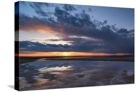 Ripples and Fluff-Michael Blanchette-Stretched Canvas Print