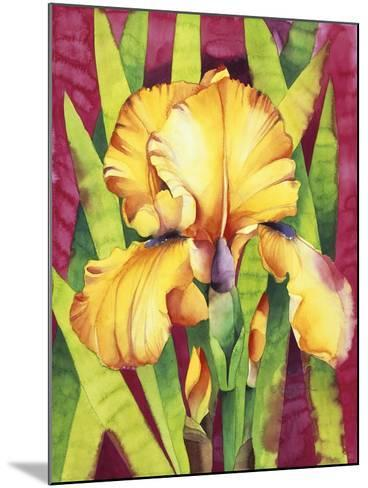 Yellow Iris with Maroon Back-Mary Russel-Mounted Giclee Print