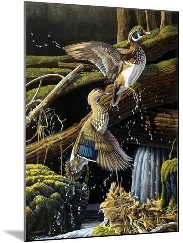 Hidden Pool-Michael Budden-Mounted Giclee Print