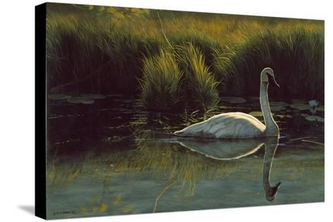 Reflections of Grace-Michael Budden-Stretched Canvas Print