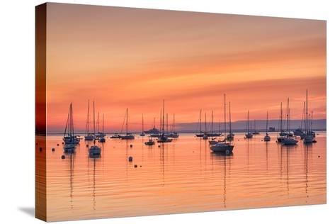 Pastel Harbor-Michael Blanchette-Stretched Canvas Print