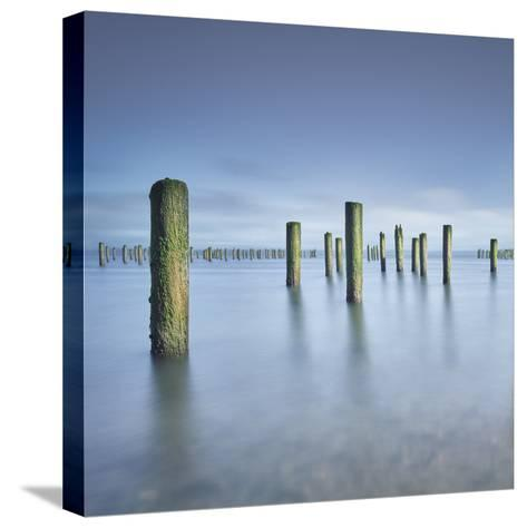 Army 2-Moises Levy-Stretched Canvas Print
