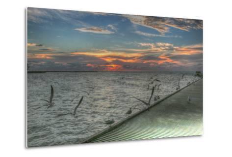 Key West Sunrise Gulls and Pier-Robert Goldwitz-Metal Print