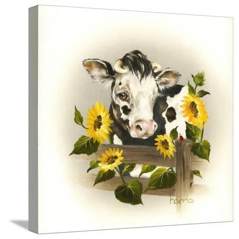 Cow and Sunflowers-Peggy Harris-Stretched Canvas Print