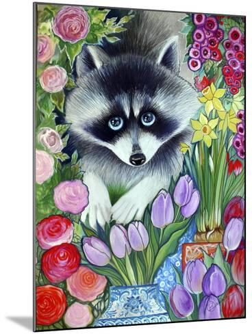 Raccoon-Oxana Zaika-Mounted Giclee Print