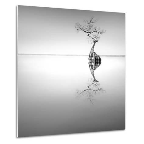Zen Tree-Moises Levy-Metal Print