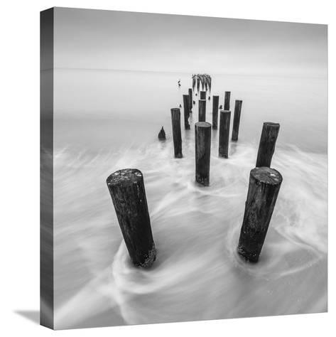Movement-Moises Levy-Stretched Canvas Print