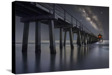 Still Searching-Moises Levy-Stretched Canvas Print