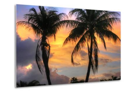 Key West Two Palm Sunrise-Robert Goldwitz-Metal Print