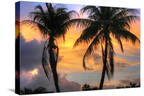 Key West Two Palm Sunrise-Robert Goldwitz-Stretched Canvas Print
