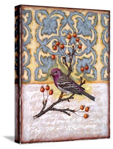 Chilmark Finch-Rachel Paxton-Stretched Canvas Print