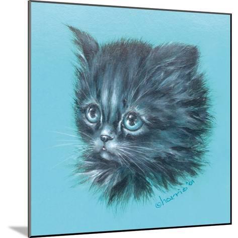 Black Kitten - 23A-Peggy Harris-Mounted Giclee Print