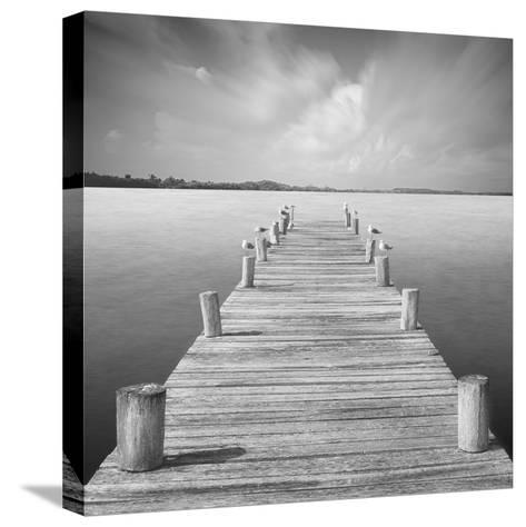 Tierra Desnuda-Moises Levy-Stretched Canvas Print