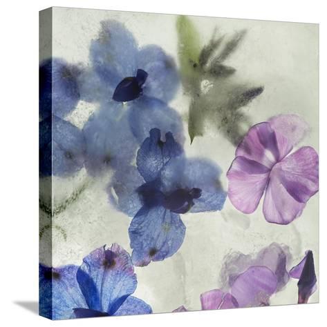 Flores en Hielo I-Moises Levy-Stretched Canvas Print
