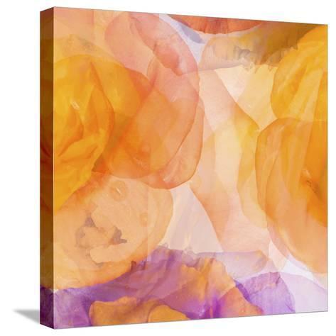 Rosas Compo 5-Moises Levy-Stretched Canvas Print