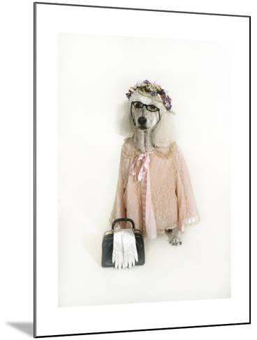 Poodle Dressed as Older Woman-Nora Hernandez-Mounted Giclee Print