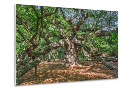 Angel Oak-Robert Goldwitz-Metal Print