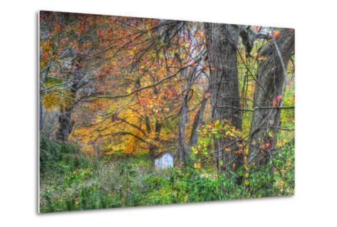Autumn Shed-Robert Goldwitz-Metal Print