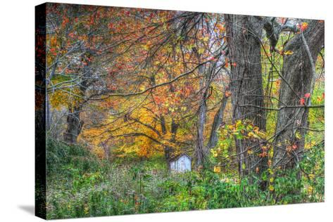 Autumn Shed-Robert Goldwitz-Stretched Canvas Print