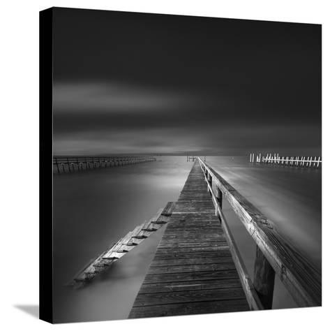 Options BW-Moises Levy-Stretched Canvas Print