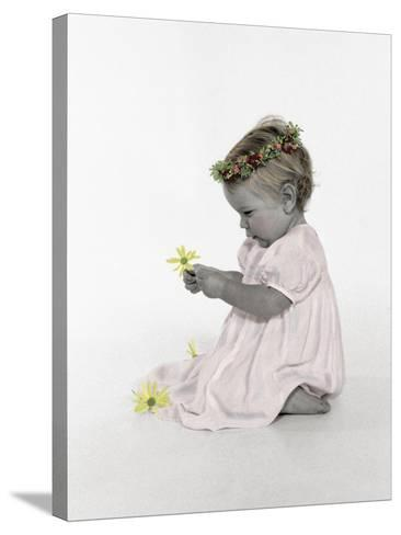 Baby Angel Portrait-Nora Hernandez-Stretched Canvas Print