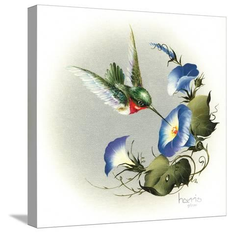 Wee Wonder-Peggy Harris-Stretched Canvas Print