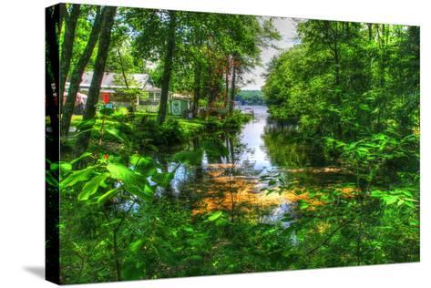 Pond Cove-Robert Goldwitz-Stretched Canvas Print
