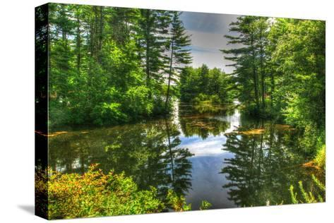 Pond and Pines-Robert Goldwitz-Stretched Canvas Print