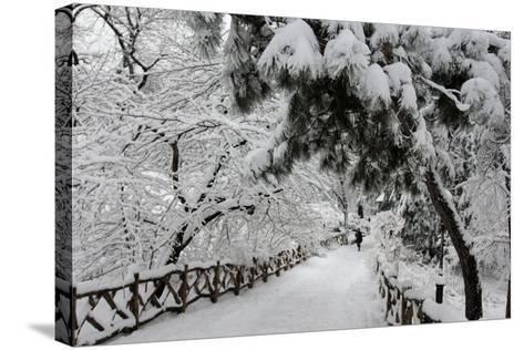 Central Park Path Deep Snow-Robert Goldwitz-Stretched Canvas Print