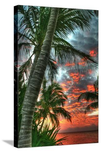 Key West Palm Sunrise Vertical-Robert Goldwitz-Stretched Canvas Print